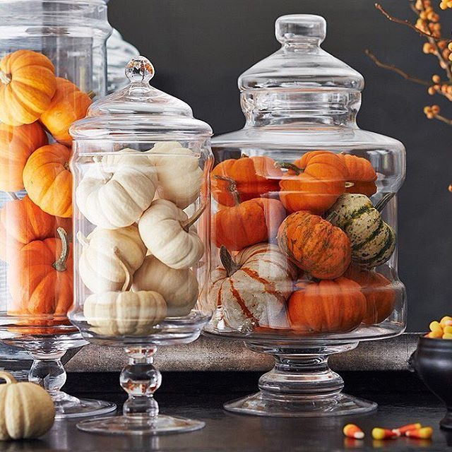 Category: Halloween Decorating | Interior Decorating Blog | Bella B Home